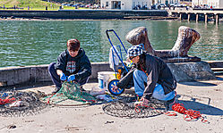 San_Francisco_Fort_Point_2019-0023.jpg