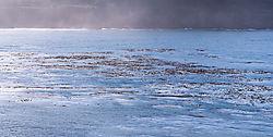 Mendocino_Big_River_Estuary_0014.jpg