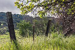 Pleasanton_Alviso_Adobe_Park_2015-0090.jpg