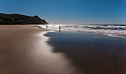 San_Gregorio_Beach_Fishermen_and_Surf_2020-0201.jpg
