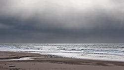 San_Gregorio_Beach_Incoming_Storm_2019-451.jpg