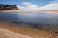 San_Gregorio_Beach_Lagoon_2019-015.jpg