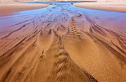San_Gregorio_Beach_Lagoon_Outlet_2020-0240.jpg