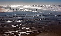 San_Gregorio_Beach_West_Sand_2020-0274-01.jpg