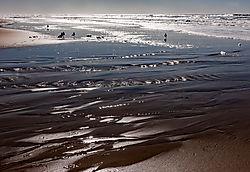 San_Gregorio_Beach_Wet_Sand_2020-0274-02.jpg