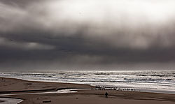 San_Gregorio_State_Beach_Incoming_Squall_2019-452.jpg