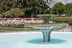 San_Jose_Municipal_Rose_Garden_0019.jpg