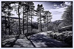 Derwent_Valley_014.jpg