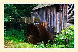 Cades_Cove_Water_WheelMAI.jpg
