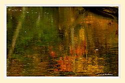 Salmon_Brook_ReflectionMAI_copy.jpg
