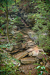 2019-09-20_11_51_02_Arkansas_Outdoors_991.jpg