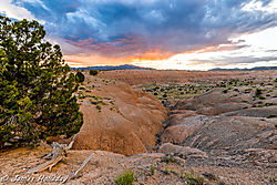 2019nature_day-jh1day.jpg