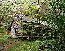 Smoky_Mountains_Cabin_A-8X10.jpg