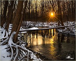 feb2020-landscape-Melman59.jpg