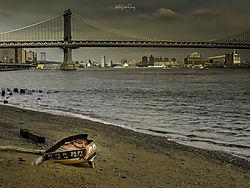 After_Sandy.jpg