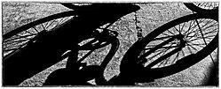 Bikeshodow1.jpg