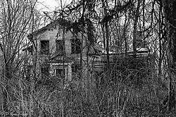 Once_a_Dream_Home.jpg