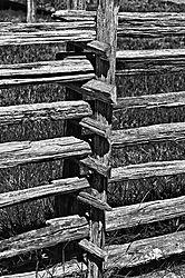 old_fencing.jpg