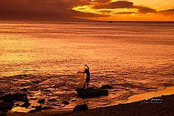 20200219-Maui-033-Edit.jpg