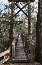 CCC_camp_foot_bridge_across_the_Suwanee_River.jpg