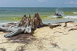 Gulf_of_Mexico_Panhandle_Beach.jpg
