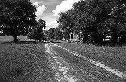 1091shack-road.jpg