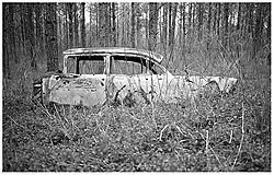 1091woodscar1.jpg