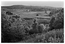 6816victor-hills-200306-print.jpg
