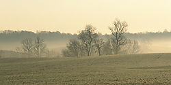 4921foggy-farm-usefilm.jpg