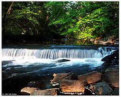 5650Image2-Tookany-Creek-8x10-f.jpg