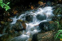 18305mammoth_creek.jpg