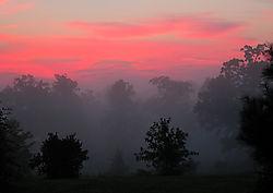 17158Nikonians-sunrise-fog-2577c.jpg