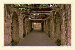 Alamo1S2CM.jpg