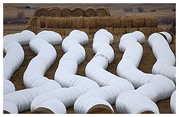 2685Hay-Bales-In-White