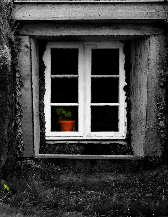 9078Iceland-Window