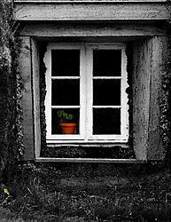 9078Iceland-Window.jpg
