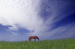 Wolkenstimmung_Kopie.jpg