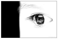 7785Anna_s_eye.jpg