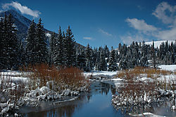 21906Snow_Reflections_Of_Winter.jpg