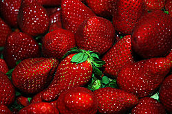 27335strawberries1.jpg