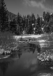 21906Reflections_Of_Winter_in_B_W_a.jpg