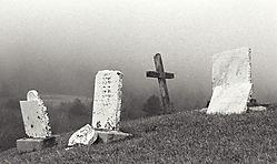 30836In_the_fog.jpg