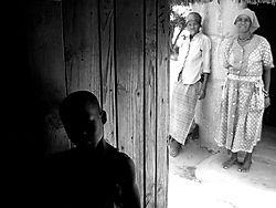 10927African_shadow_light.JPG