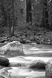 37618Soft-River1.jpg