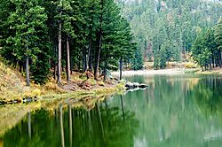 Black-hills-small-lake.jpg