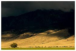 15682Pray_Montana_3.jpg
