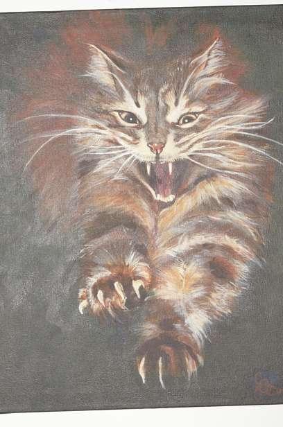 Fierce_Cat_1jpeg