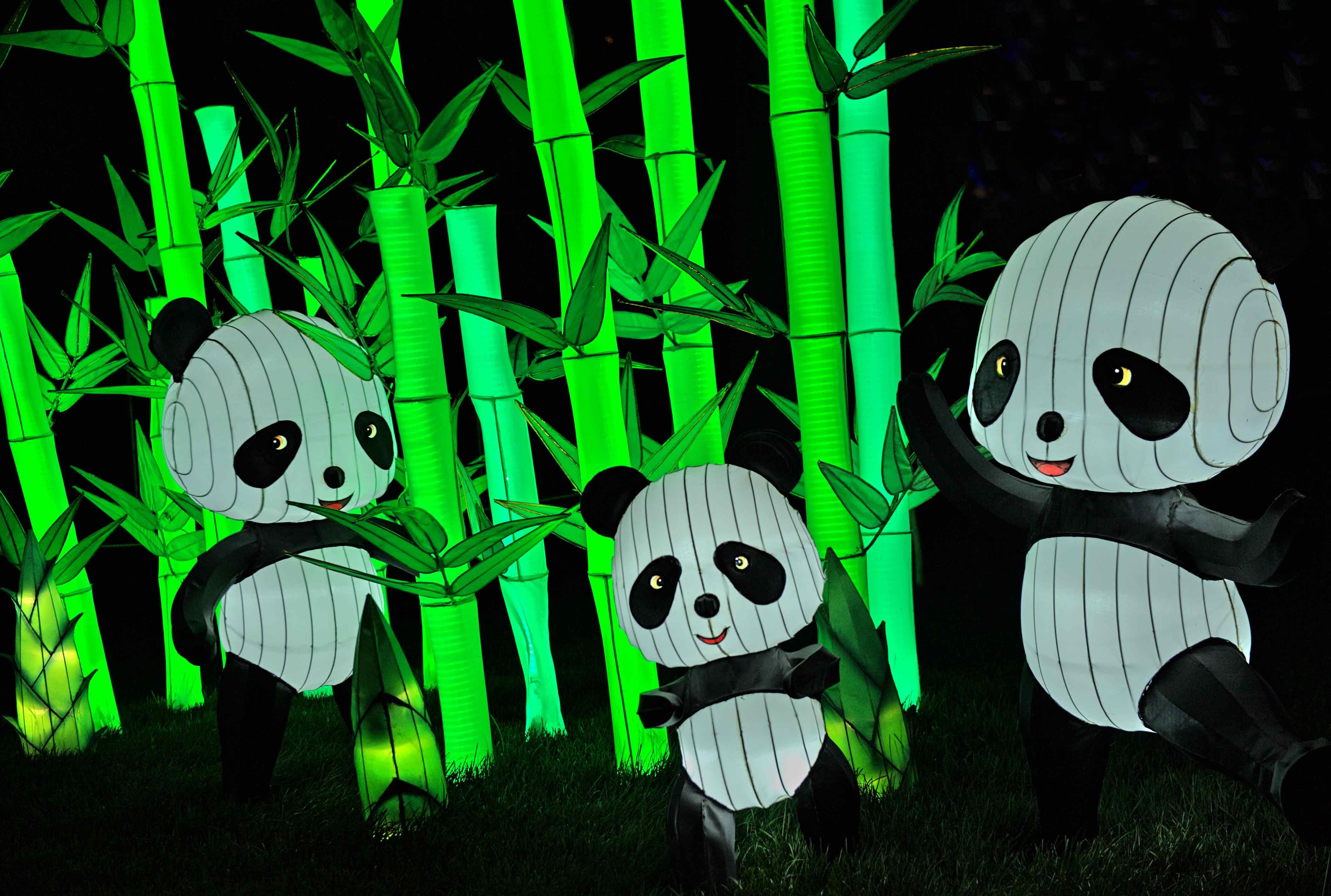 Illuminasia_Pandas1