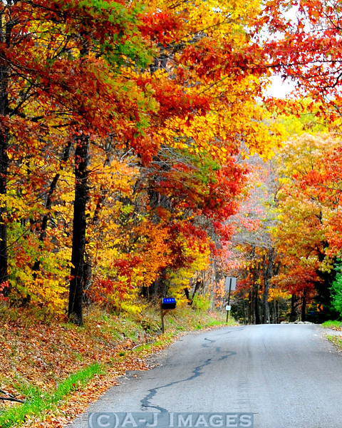 autumn_country_road