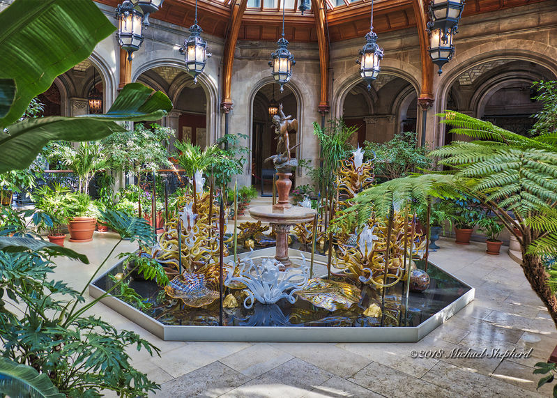 Winter Garden with Chihuly | Nikonians